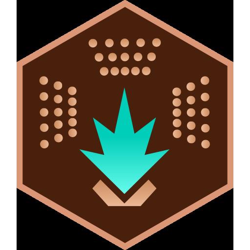 engineer_medaille